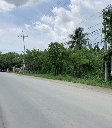 2-hectare lot for sale in Trece Martires, Cavite